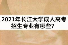 2021年长江大学成人高考招生专业有哪些?