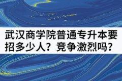 2021年武汉商学院普通专升本要招多少人?竞争激烈吗?