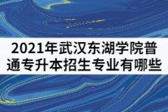 2021年武汉东湖学院普通专升本招生专业有哪些?