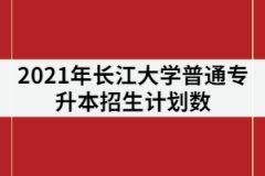 2021年长江大学专升本招生专业计划数调整后是多少?录取率高吗