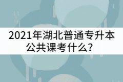 2021年湖北普通专升本公共课考什么?