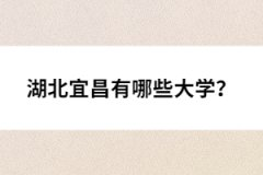 湖北宜昌有哪些大学?