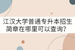 江汉大学普通专升本招生简章在哪里可以查询?
