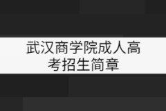 武汉商学院成考招生简章