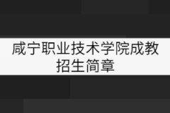 咸宁职业技术学院成教招生简章