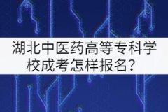 湖北中医药高等专科学校成考怎样报名?